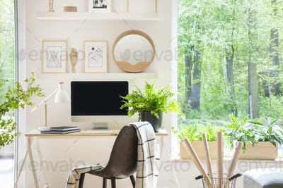 Shelves with illustrations above a wooden desk with computer by