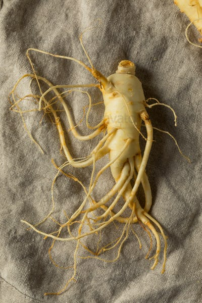Raw Organic Healthy Ginseng Root