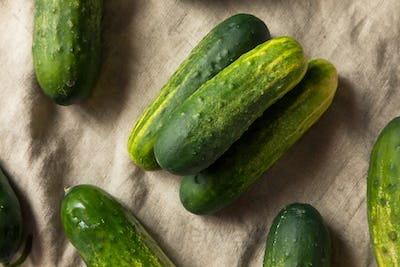 Raw Organic Green Pickling Cucumbers