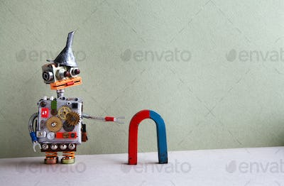 Robot and magnet
