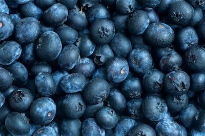 Fresh blueberries background with mist
