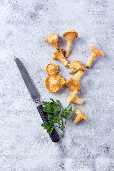 Chanterelle Mushrooms on a Stone Board