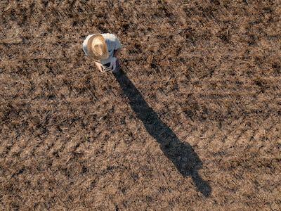 Top view of male farmer flying a drone in field