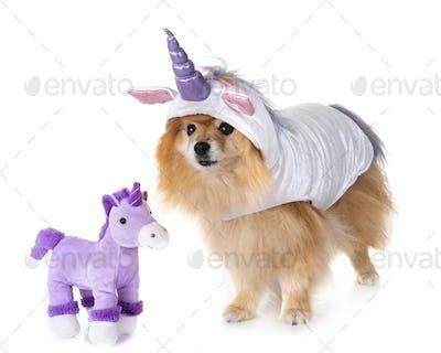 unicorn little dog