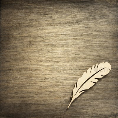 feather pen toy at plywood background
