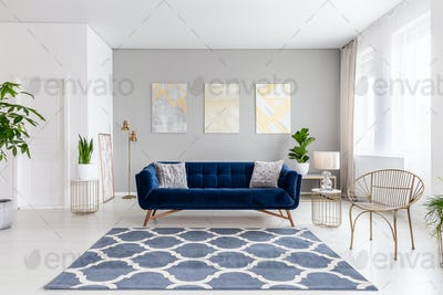 Real photo of bright living room interior with royal blue couch,