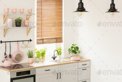 Plants on wooden countertop in kitchen interior with blinds, lam
