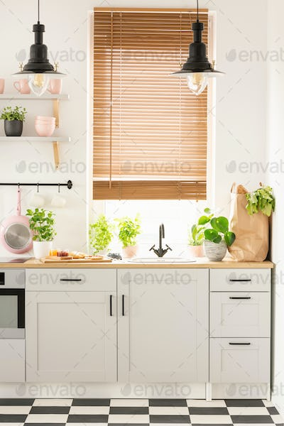 Lamps above wooden countertop with plants in bright kitchen inte