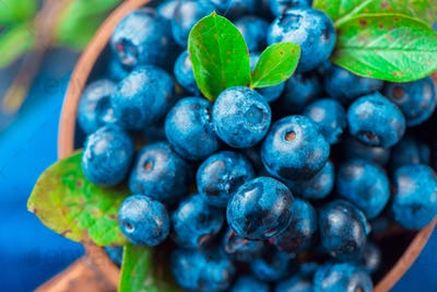 Blueberries close-up. Ripe and sweet summer berries macro. Natural beauty, blue and gray palette