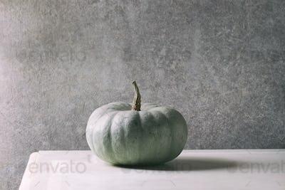 Grey big pumpkin