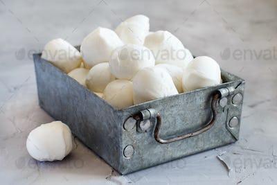Italian cheese mozzarella
