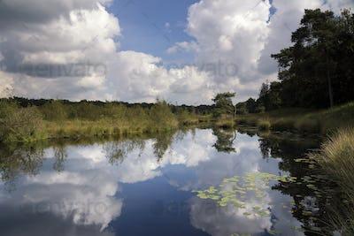 Patersmoer lake near Strijbeek