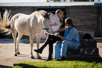 Female jockey with vet using laptop while sitting by horse