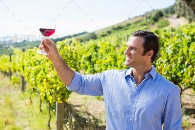 Smiling vintner holding glass of wine