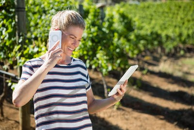 Female vintner using digital tablet while talking on mobile phone