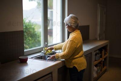 Senior woman washing dish in kitchen sink