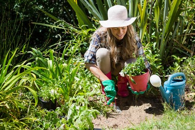 Happy woman planting sapling in garden