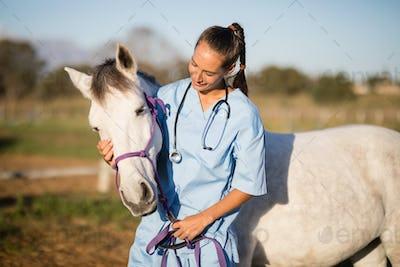 Female vet stroking horse