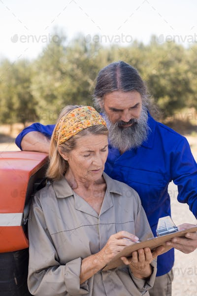 Couple discussing over clipboard in olive farm