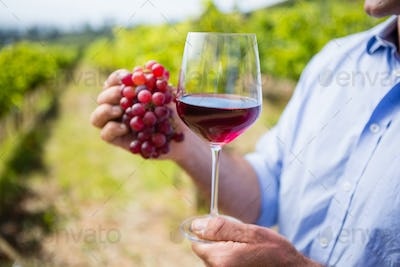 Mid section of vintner holding grapes and glass of wine