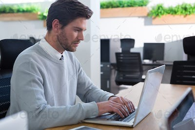 Male executive working on his laptop