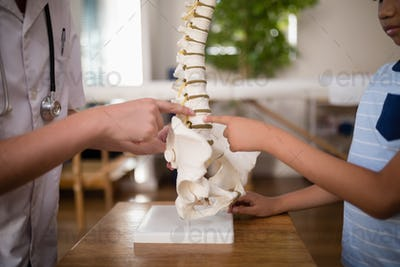 Midsection of female therapist and boy pointing at artificial spine on table