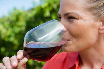 Close-up of female vintner tasting glass of wine