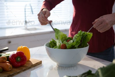 Mid section of woman preparing salad