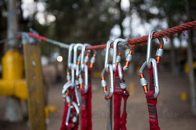 Harnesses hanging on rope in the forest