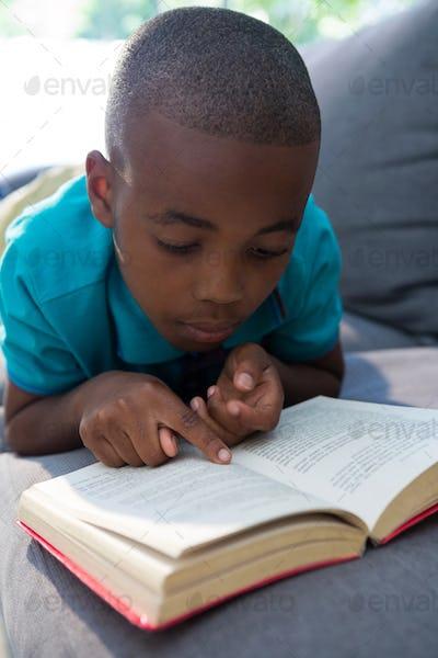 Close-up of boy reading novel at home
