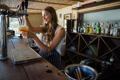 Barmaid pouring beer from tap in glass at bar