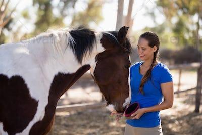 Smiling female jockey cleaning horse