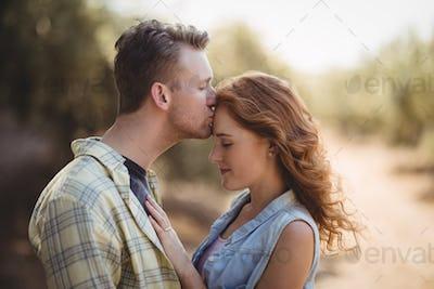 Young man kissing woman at olive farm