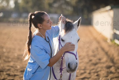 Side view of female vet checking horse ears