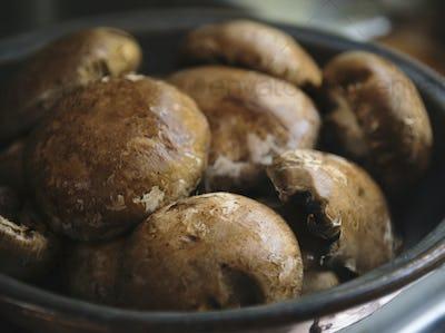 Closeup of brown cremini mushrooms
