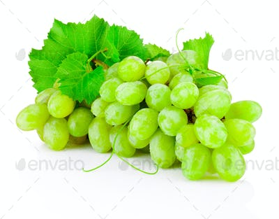 Fresh bunch of green grapes with leaves isolated on white backgr