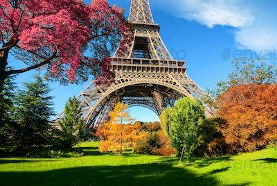 Trees in park of Paris in autumn