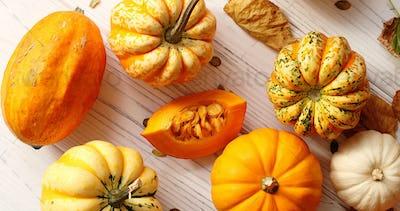 Orange pumpkins laid in disorder