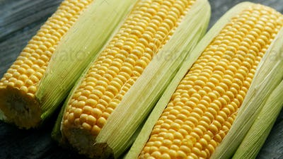 Fresh maize in leaves