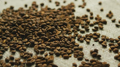 Coffee beans in disorder