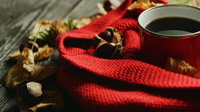 Leaves and nuts near scarf and hot beverage