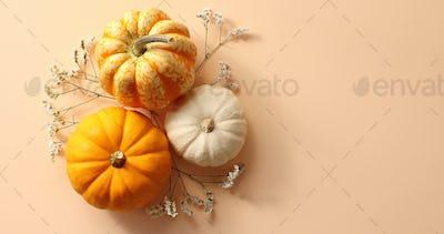 Three pumpkins laid on herbs