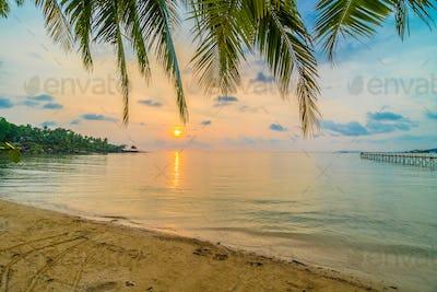 Beautiful paradise island with beach and sea around coconut palm