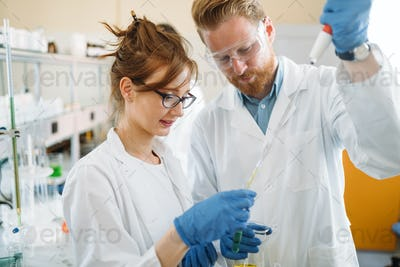 Group of students working at the laboratory