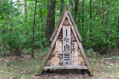 Insect hotel in the forest