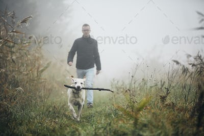Man walking with dog in autumn fog.