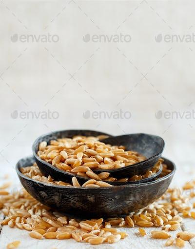 Raw Kamut grain in a bowl
