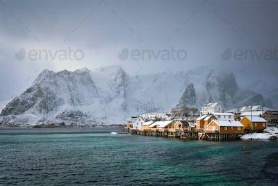 Yellow rorbu houses, Lofoten islands, Norway