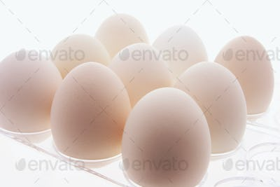 White Eggs on Plastic Egg Carton