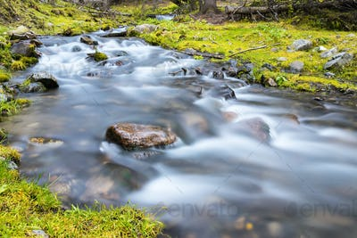 beautiful stream closeup, quiet natural scenery in valley